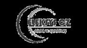 Logo www.eleksys.cz